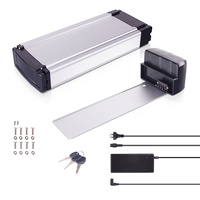 DEHAWK R1T E-Bike Battery Kit, Luggage Rack Battery Set, 36V, incl. Holder and Charger