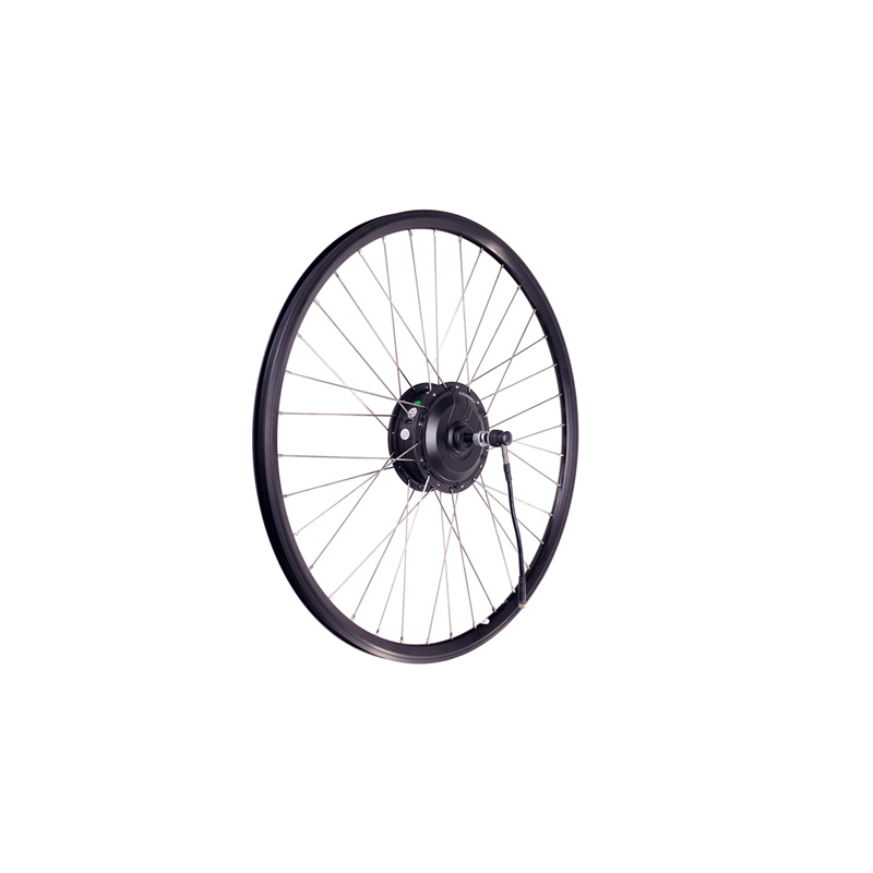 LEISGER Rear Wheel SY R2S-200S6  250W motor and rim [20 Black]